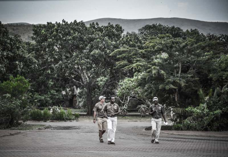 Rangers safari