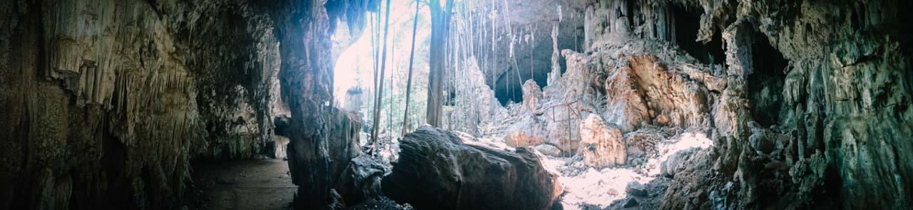Grotte des chauves souris