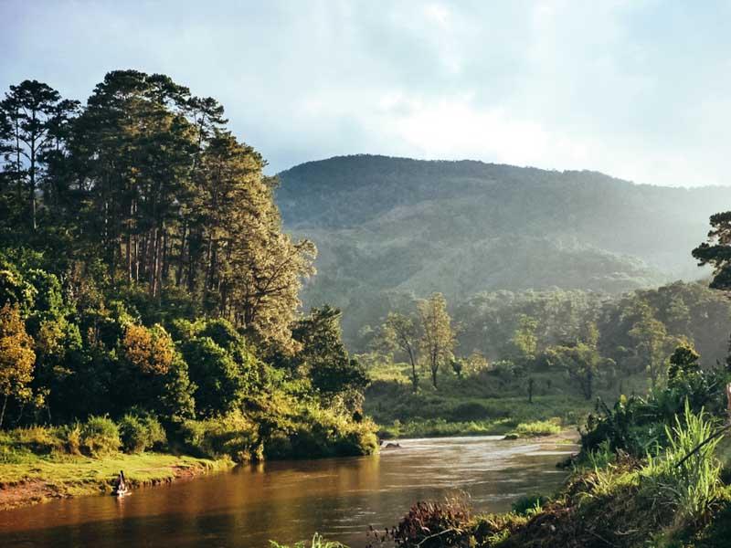 Parc Ranomafana