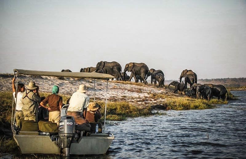 Safari en canoë