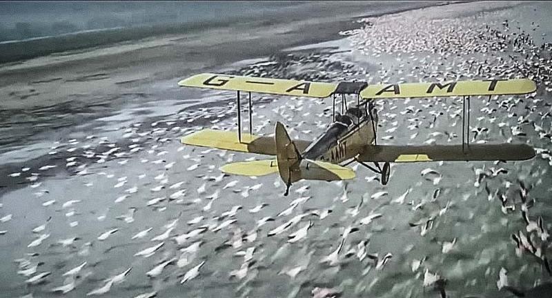 safari en avion