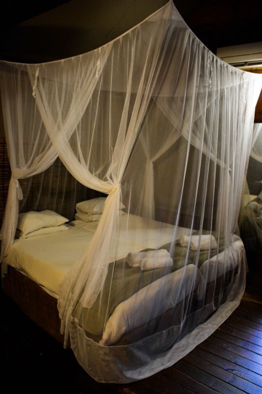 Chambre lodge safari