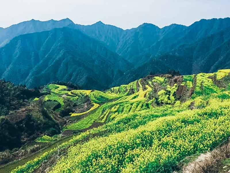 Trek à Baiji