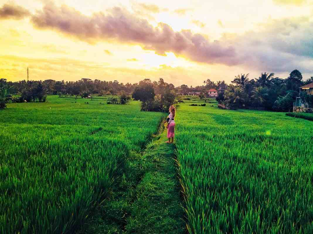 Ubud – Indonésie